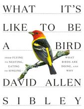 David Sibley What it's like to be a bird (Knopf)