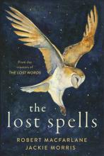 Jackie Morris Lost Spells Lost Words Point Reyes Books