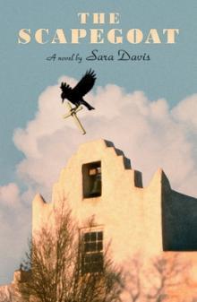 Sara Davis The Scapegoat FSG Point Reyes Books