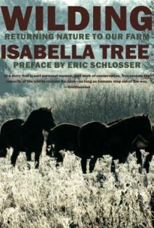 Isabella Tree Wilding Point Reyes Books